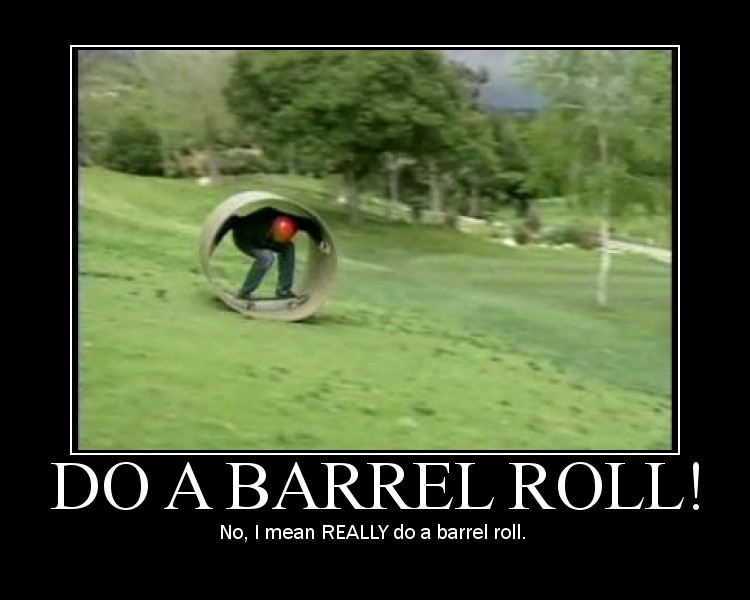 No,_I_mean_REALLY_do_a_barrel_roll.jpg_750x600