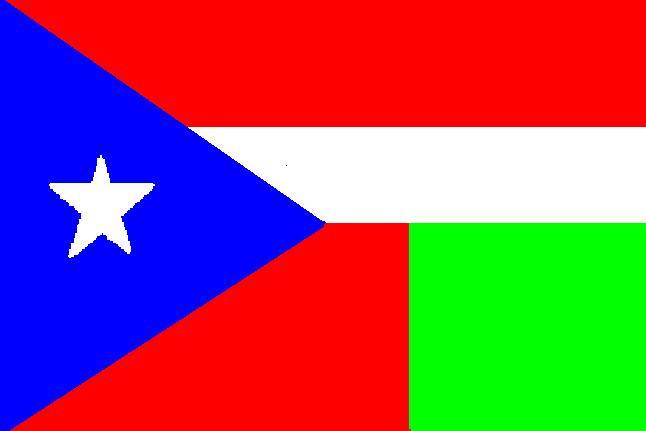 файл флага