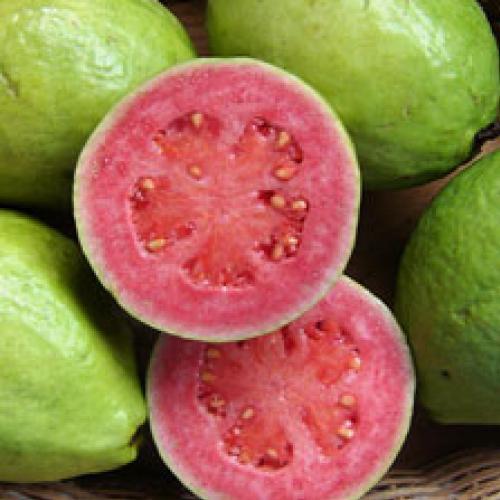 Guavafruit.jpg