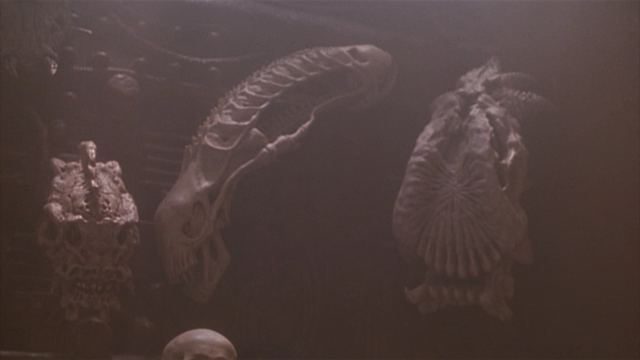 http://images.wikia.com/avp/images/f/fa/P2-the_alien_skull-1-.png