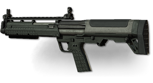 http://images.wikia.com/callofduty/ru/images/b/b3/Weapon_ksg_large.png