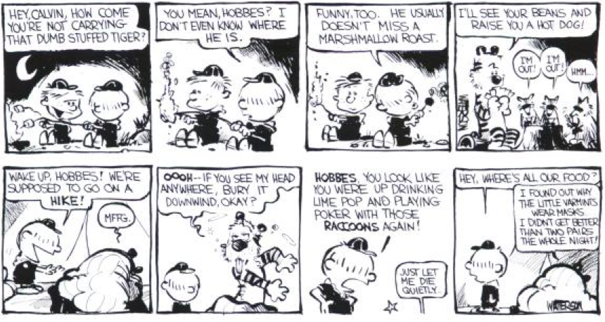 Unpublished Early Strip Calvin On Cub Scouts