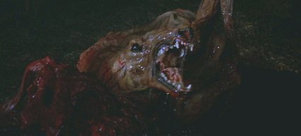 http://images.wikia.com/characters/images/2/2c/The-thing-dog-monster.jpg