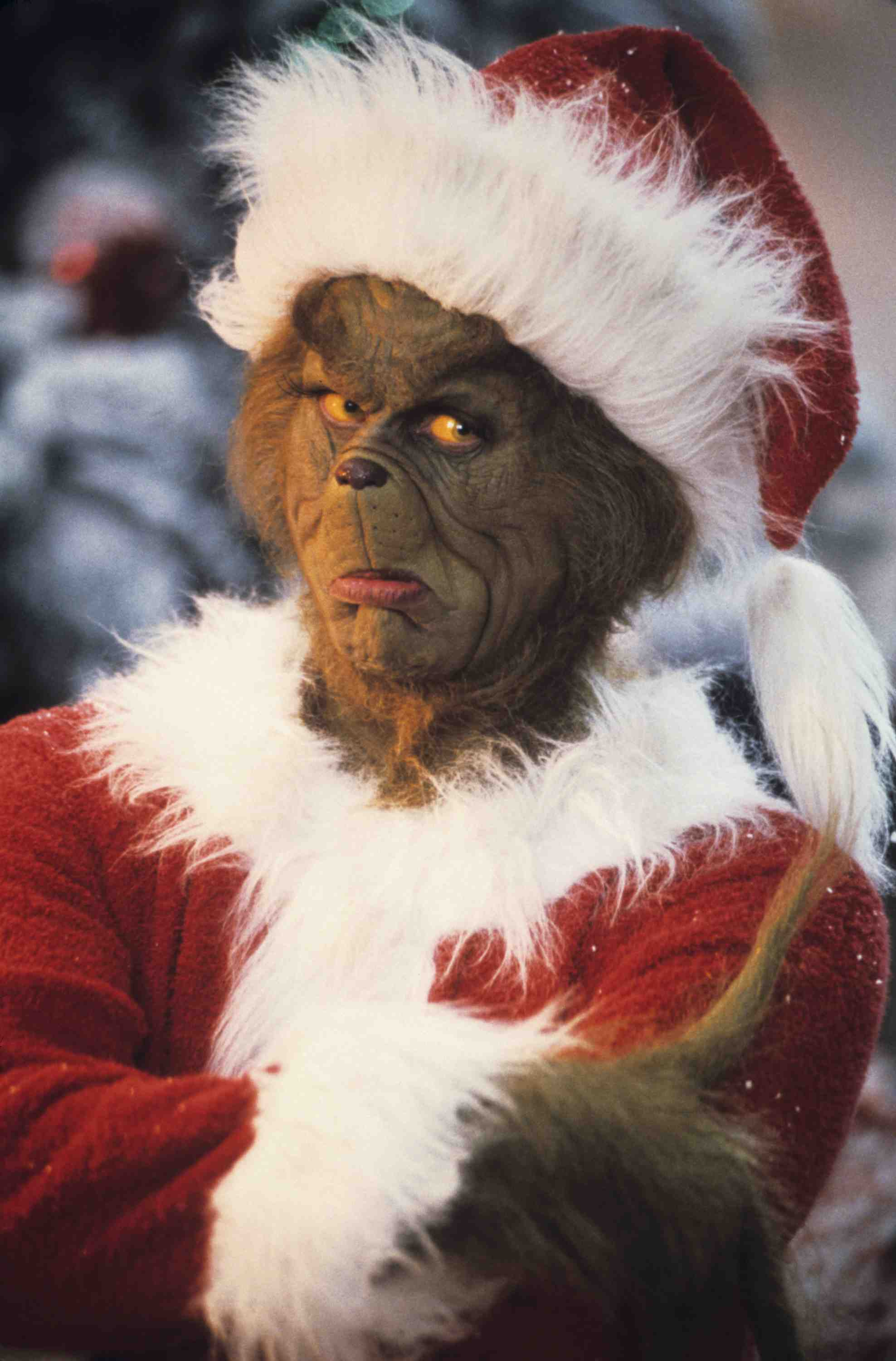 Jim Carrey The Grinch Smile How rude grinch. reply