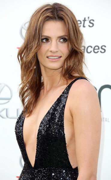 stana katic spirit