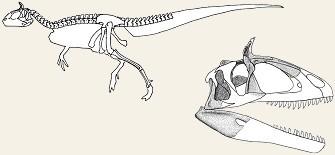 image cryolophosaurus skeletonjpg dinosaur king