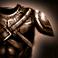 Felicity Bladewynne Ico_armor_light