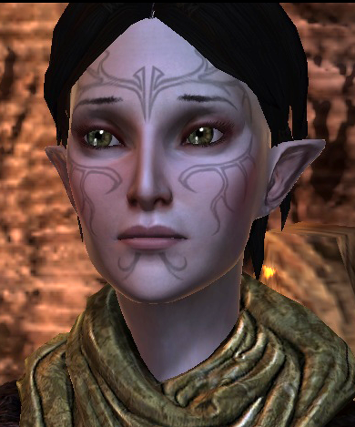 dragon age 2 merril