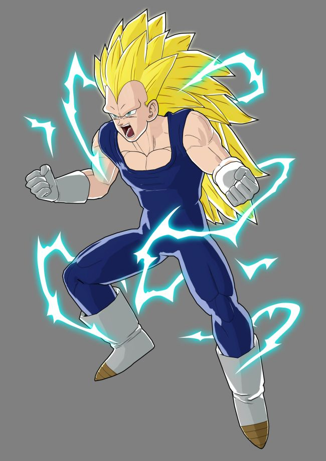dbz super saiyan 3 vegeta. He is in DBZ raging blast