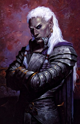 http://images.wikia.com/dungeons/images/0/07/DnD-Drow.jpg