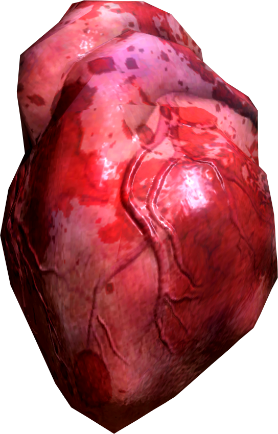 Real human heart images - photo#24
