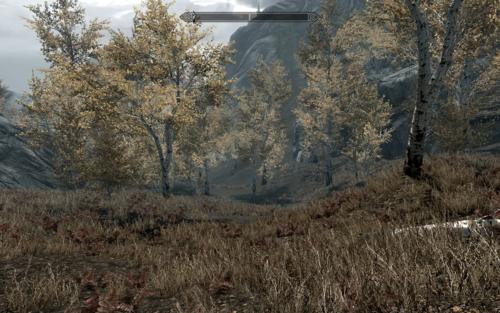 Bethesda built Morrowind & Cyrodiil into Skyrim? Why