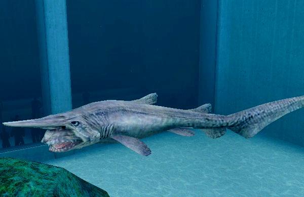 Image - Goblin Shark.jpg - Endless Ocean Wiki Oarfish Skull