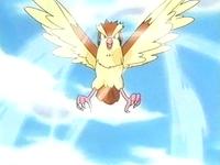 Pokemons de Kanto! EP247_Pidgey_del_prof._oak_usando_tornado
