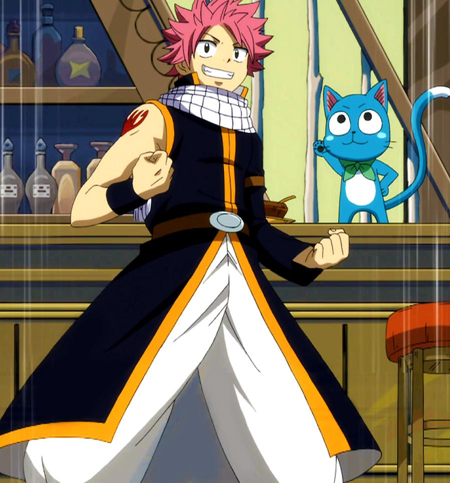 Fairy Tail: Natsu Dragneel