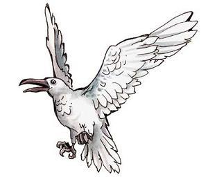 silver_ravens.jpg