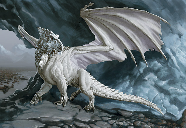 Black And White Dragon Pics. White dragon
