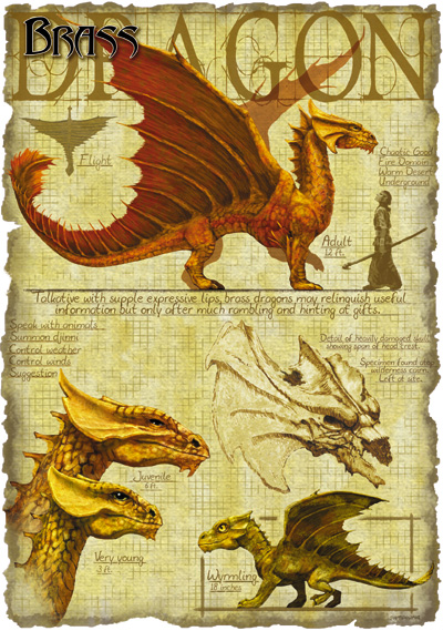 DRAGONS Brass_dragon_anatomy_-_Richard_Sardinha
