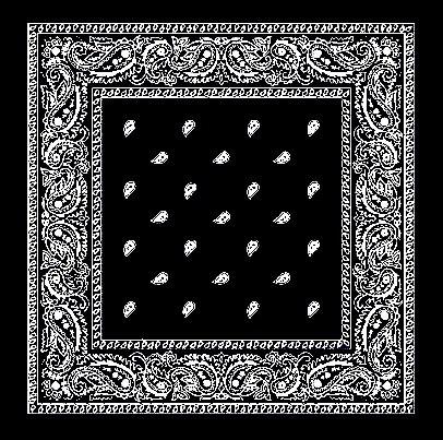 Fun Skull Black Bandana Pattern Mens' Neck Tie from Zazzle.com