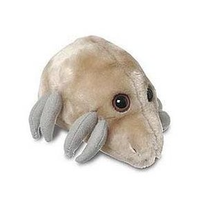 http://images.wikia.com/giantmicrobes/images/3/3d/31xZyxHMKbL._SL500_AA300_.jpg