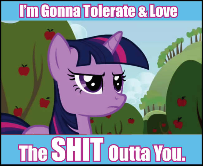 http://images.wikia.com/gyropedia/images/d/df/MLP_tolerate_and_love-(n1298853924898)-(n1301128566283)-(n1305752004146).png