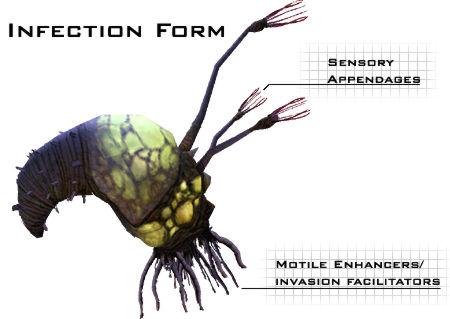Presas para los Cazadores Infection8kd