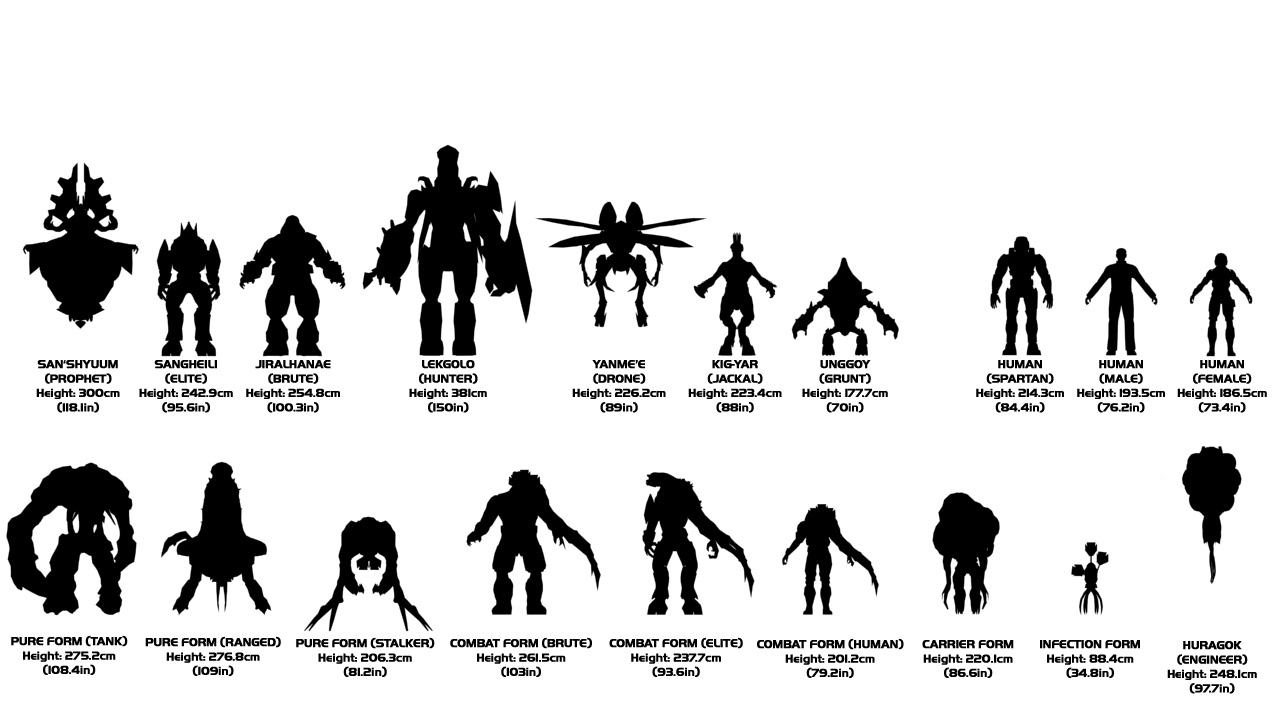 Image - 14-CharacterComparison.png - Halo Nation — The ...