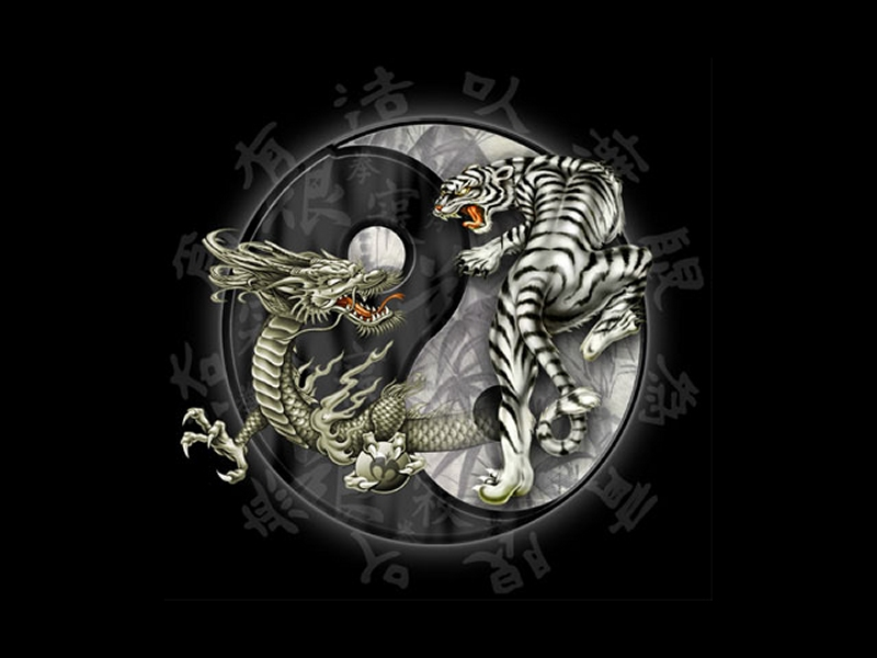 YIN AND YANG MEANING