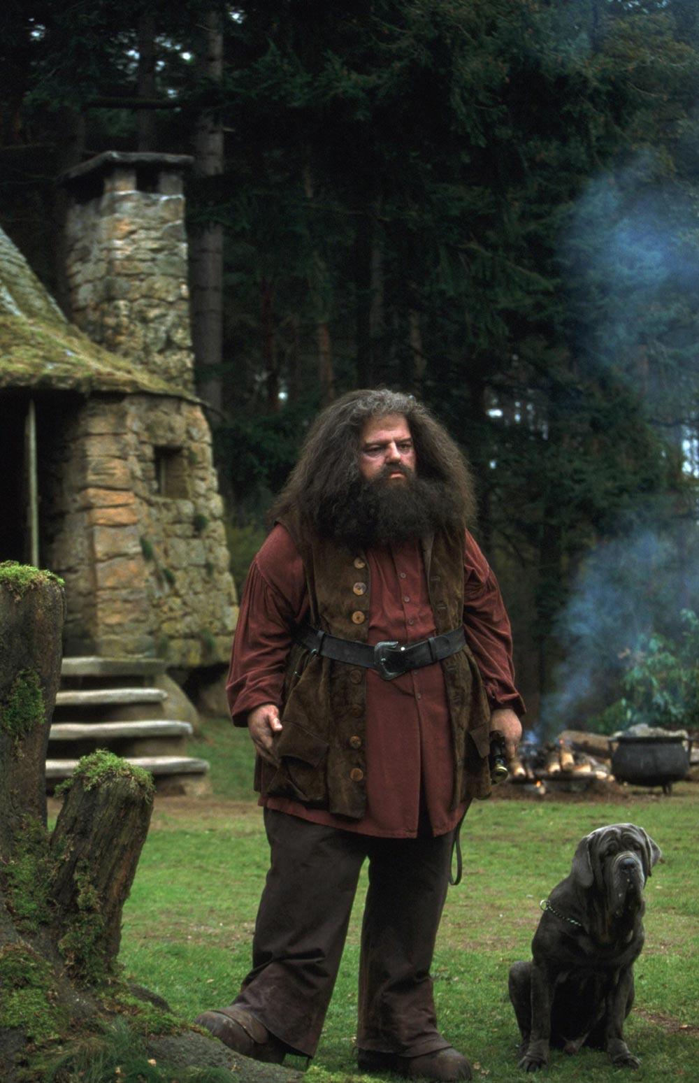 http://images.wikia.com/harrypotter/images/1/19/Hagrid_l.jpg