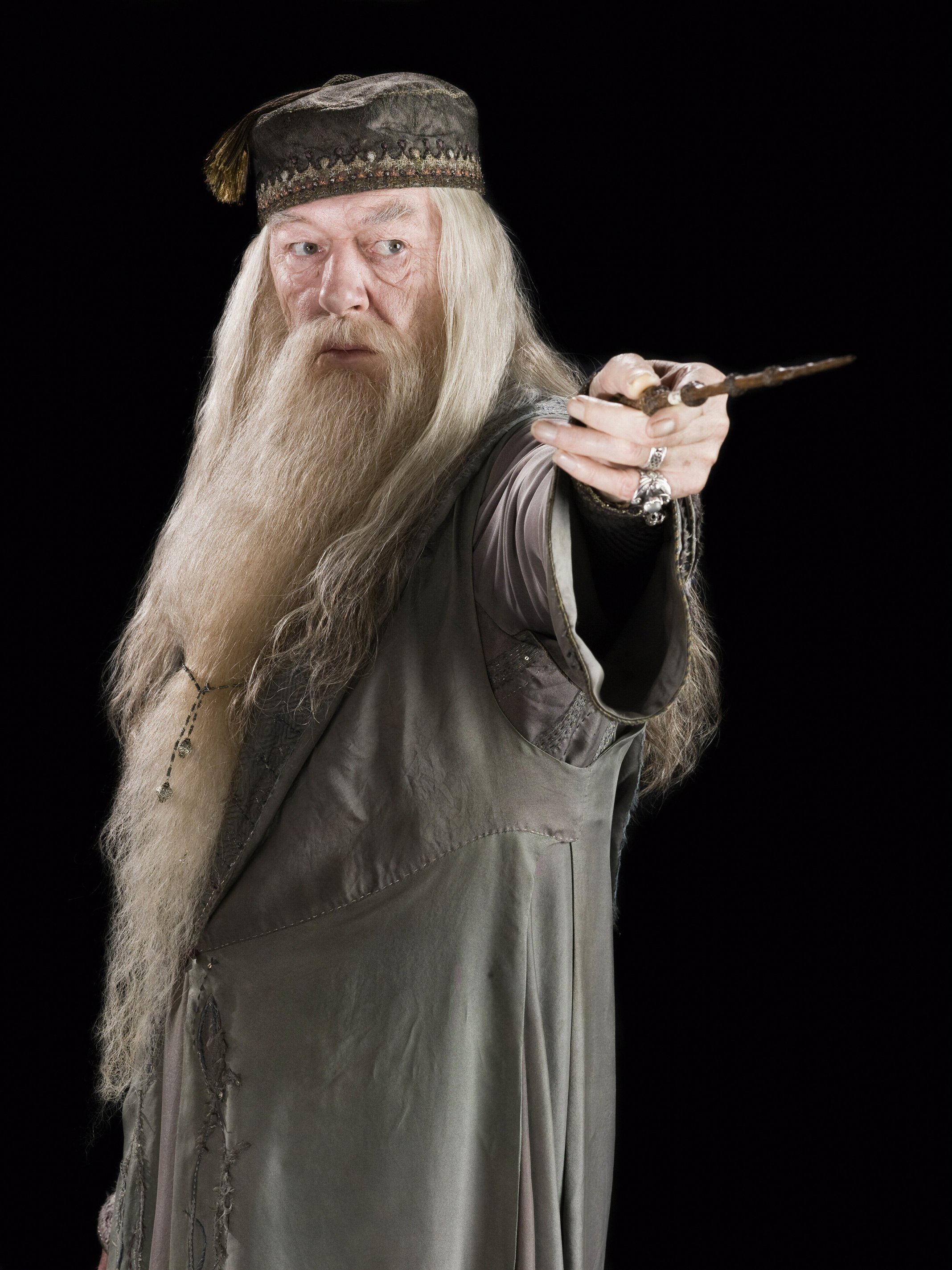 beardly dumbledorely dumbledore