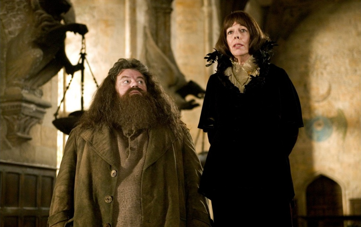 http://images.wikia.com/harrypotter/images/6/69/Hagridandolympe.jpg