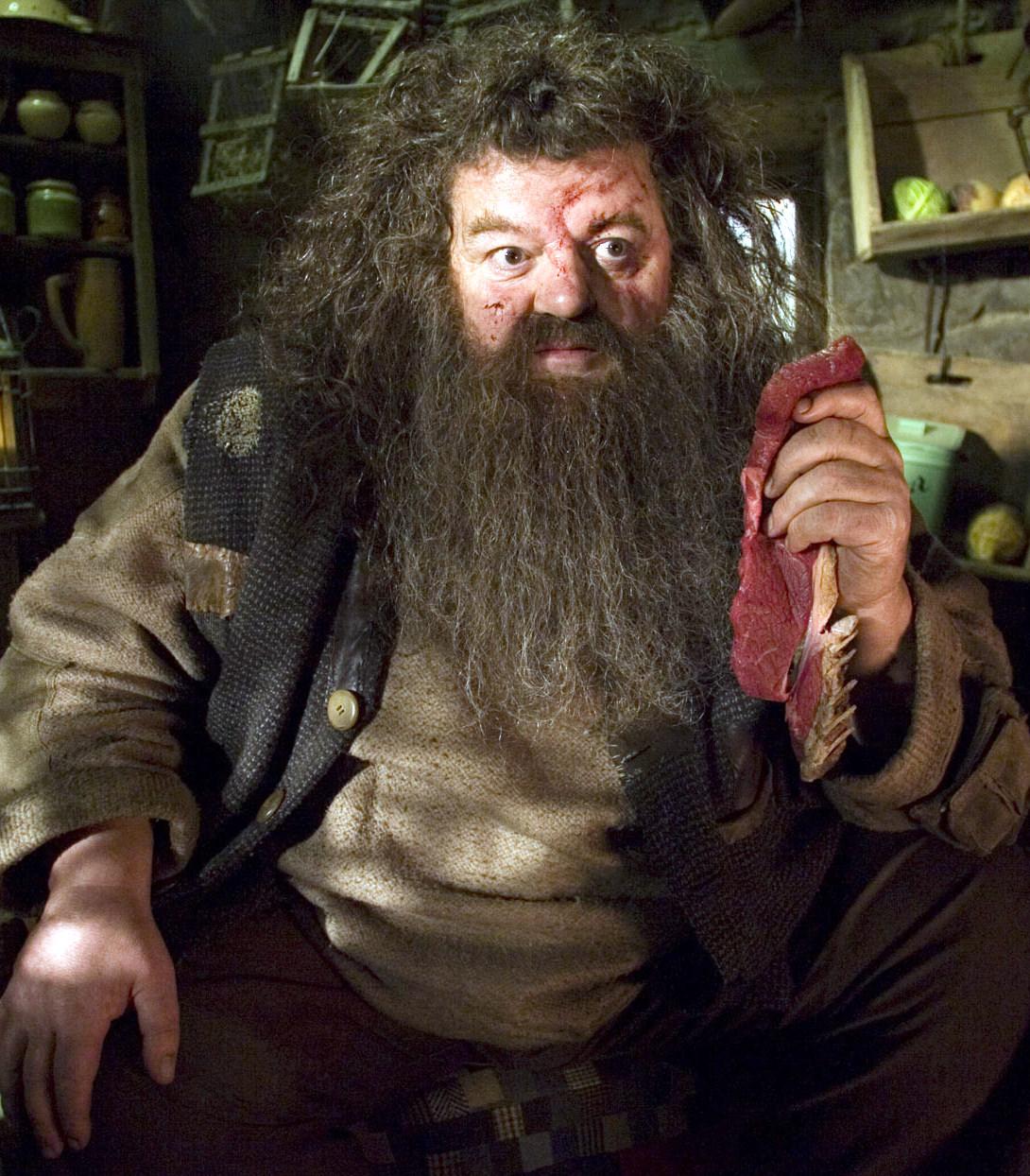 Hagrid - Harry Potter