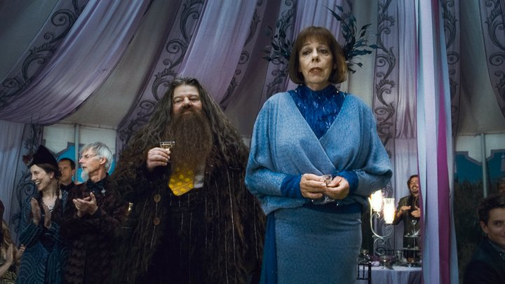 http://images.wikia.com/harrypotter/images/b/bc/Rubeus_Hagrid_Olympe_Maxime_D_H_Wedding_1.jpeg