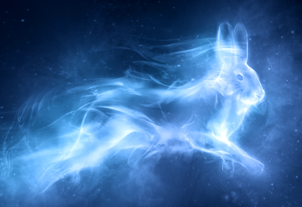http://images.wikia.com/harrypotter/images/f/f8/Patronus_Hare.jpg