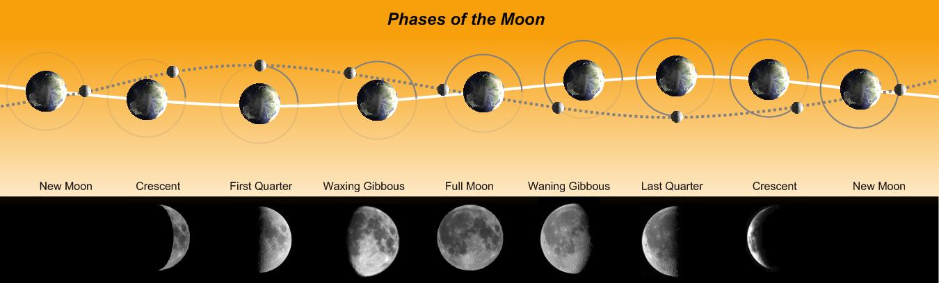 moon phases worksheet. See Moon phases Worksheet Moon