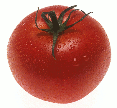 http://images.wikia.com/healthyrecipes/images/9/9d/Tomato.png