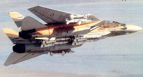 http://images.wikia.com/jets/images/f/f5/F-14a_tomcat.jpg