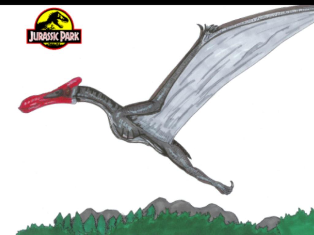 Hatzegopteryx Size Image - Quetzalcoatlis...