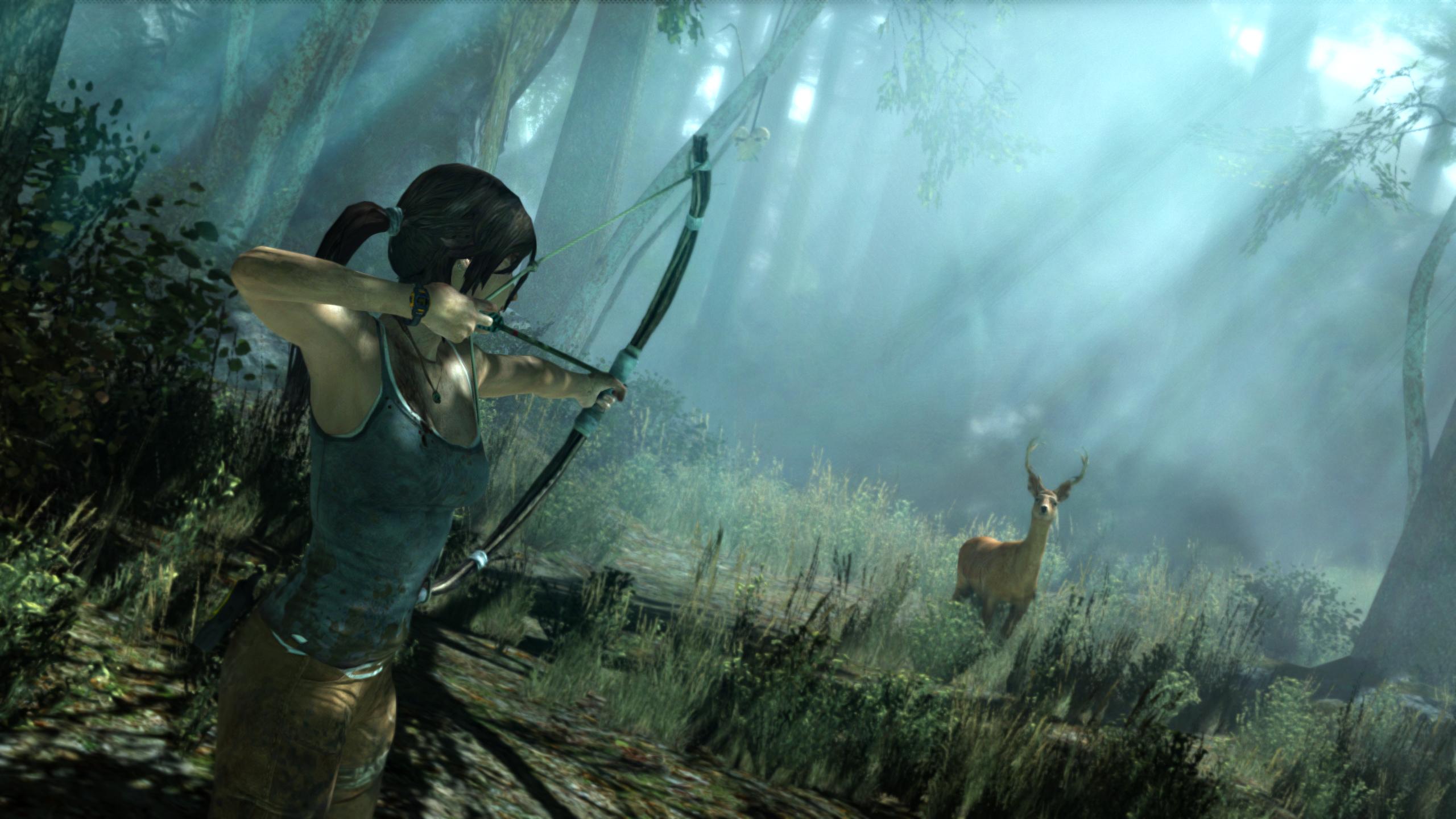 Tomb Raider (2013) - 16