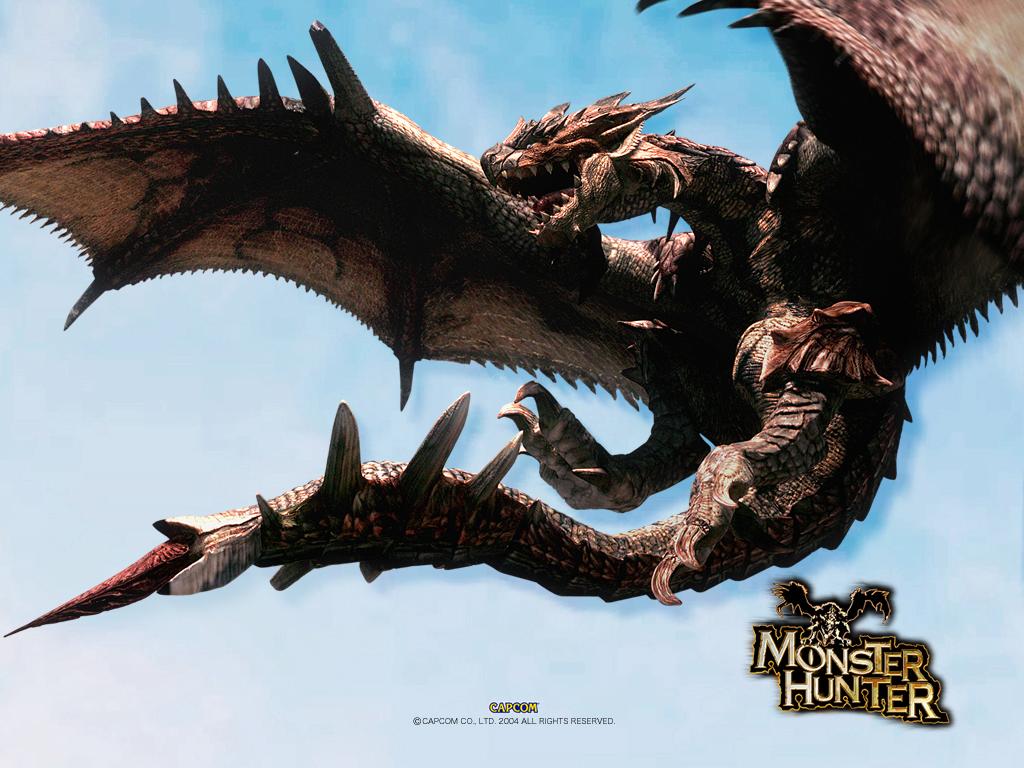 "Hero ""Hunter"" from the game Monster Hunter Rathalos24"