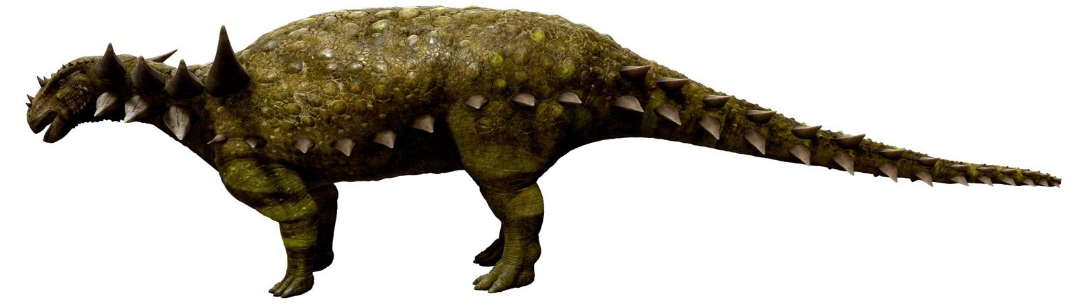 File Sauropelta jpgSauropelta