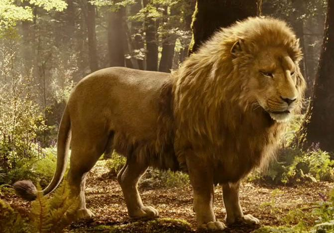 gender roles in narnia Top ten narnia scenes for understanding aslan bible difficulties  some of the things on biblical gender roles harmonize with the bible, but many things could give married men license to essentially treat their wives as semen repositories this is not acceptable to me.