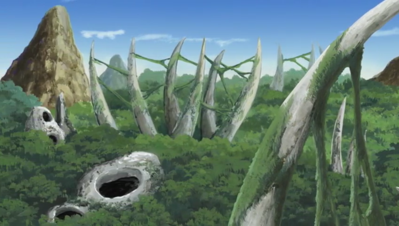 http://images.wikia.com/naruto/images/6/6d/Mountain_Graveyard.png