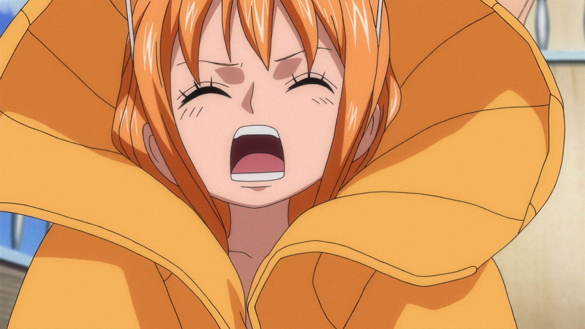 Image young the one piece wiki manga anime - Image one piece nami ...