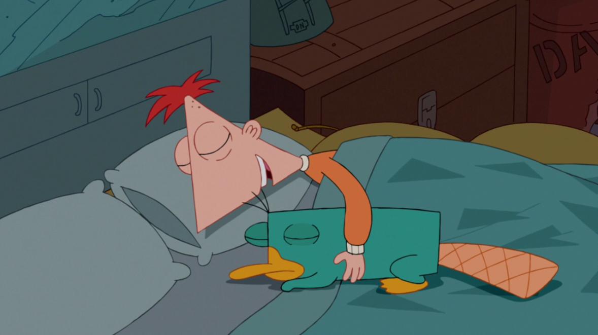 Perry tambien duerme, pero estabes creo que tuvo una pesadilla, que mal no? :(