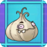 Garlic2.png
