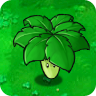 Umbrella_Leaf1.png