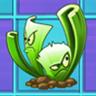 Celery_Stalker2.png