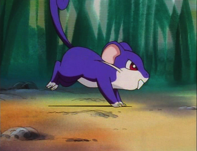 http://images.wikia.com/pokemonfanon/images/e/ee/Rattata_anime.png