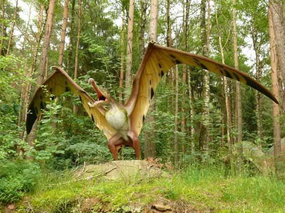 http://images.wikia.com/powerlisting/images/8/8e/Pterosaur-580x435.jpg